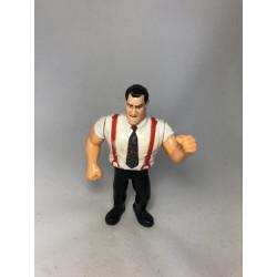 WWF - STAR DU CATCH - I.R.S